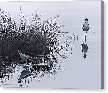 Reflections Canvas Print by Peter Mathios