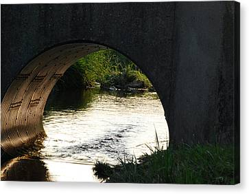Canvas Print featuring the photograph Reflections by Ramona Whiteaker
