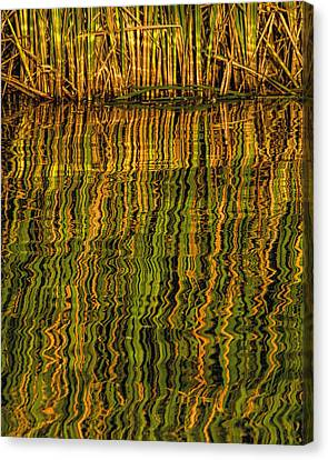 Canvas Print featuring the photograph Reflections by Rob Graham