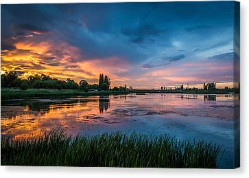 Reflections Canvas Print by Vlad Costras