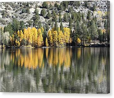Reflections2 Canvas Print