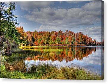 Reflective Autumn Canvas Print by David Simons