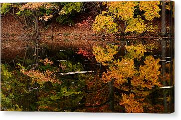 Reflective Colors Canvas Print by Lourry Legarde