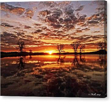 Reflective Dawn Canvas Print
