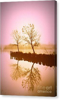 Reflective Glow Canvas Print by Julie Lueders