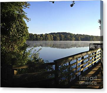 Reflective Morning Canvas Print by Nancy E Stein
