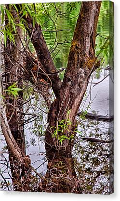 Reflective Trees In A Lake Canvas Print by Omaste Witkowski