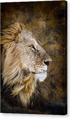 Regal Bearing Canvas Print by Mike Gaudaur