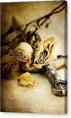 Romance Renaissance Canvas Print - Regrets by Stephanie Frey