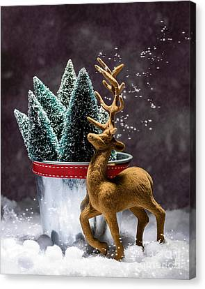 Reindeer At Christmas Canvas Print by Amanda Elwell