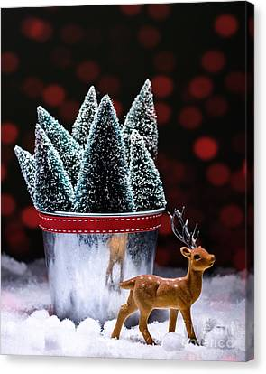 Reindeer With Christmas Trees Canvas Print