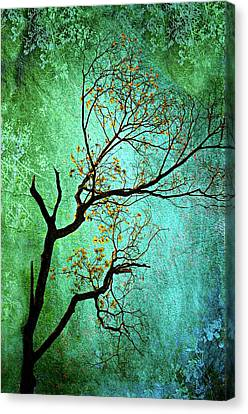 Jade Canvas Print by Diana Angstadt