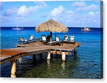 Canvas Print featuring the photograph Relax by Haren Images- Kriss Haren