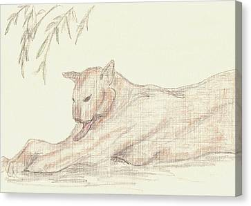 Relaxing Panther Canvas Print by Rosalie Scanlon