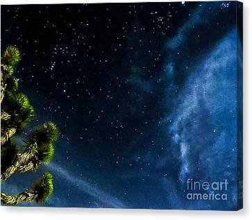Releasing The Stars Canvas Print