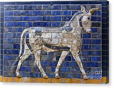 Relief From Ishtar Gate In Babylon Canvas Print by Robert Preston