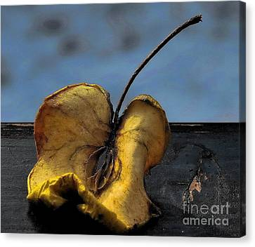 Canvas Print featuring the photograph What's Left Over... by Marija Djedovic
