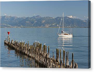 Remains Of Old Harbour # 1 Canvas Print by Holger Spiering