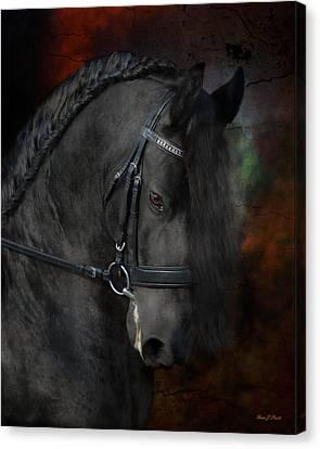 Horse Artwork Canvas Print - Rembrandt  by Fran J Scott