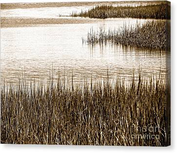 Remember The Silence Canvas Print by Q's House of Art ArtandFinePhotography