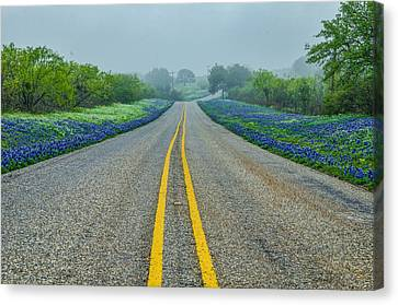Remembering Spring In Texas Canvas Print by Jeffrey W Spencer