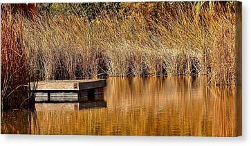 Canvas Print featuring the photograph Remembering Summer Times by Elaine Malott