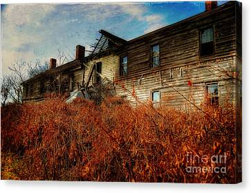 Remembering When Canvas Print by Lois Bryan