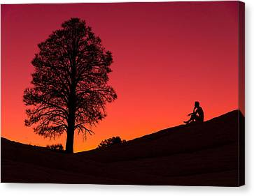Reminiscing Canvas Print by Chad Dutson