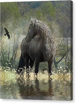 Horse In Art Canvas Print - Remme And The Crow by Fran J Scott