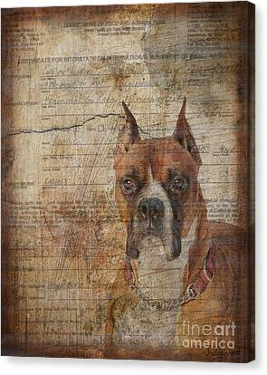 Rescued Canvas Print by Judy Wood