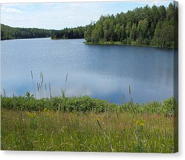Reservoir 1 Canvas Print by Gene Cyr