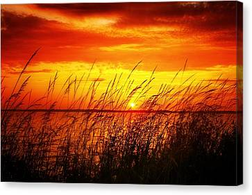 Reservoir Sunset 3 Canvas Print by Jim Albritton