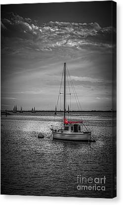 Rest Day B/w Canvas Print by Marvin Spates