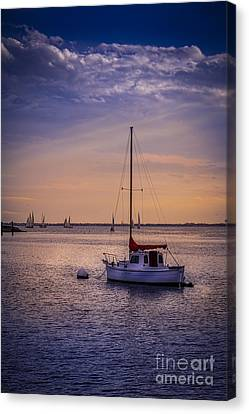 Rest Day Canvas Print by Marvin Spates