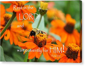 Rest In The Lord Canvas Print by Barbara Stellwagen