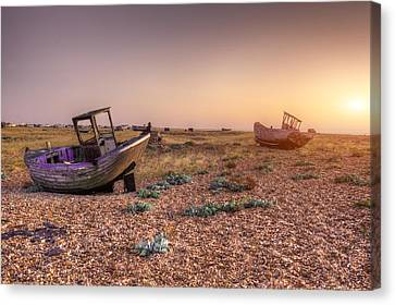 Rested Two Canvas Print by Jason Green