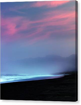 Restful Coastline Canvas Print by Leland D Howard