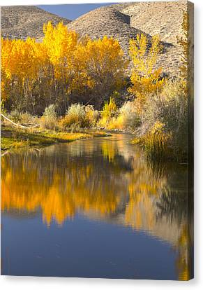 Restful Waters Canvas Print