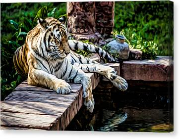 Resting Beauty Canvas Print
