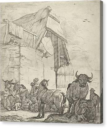 Resting Cattle On A Farm, Jan Van Ossenbeeck Canvas Print