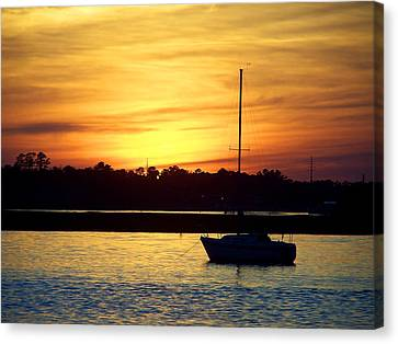 Canvas Print featuring the photograph Resting In A Mango Sunset by Sandi OReilly
