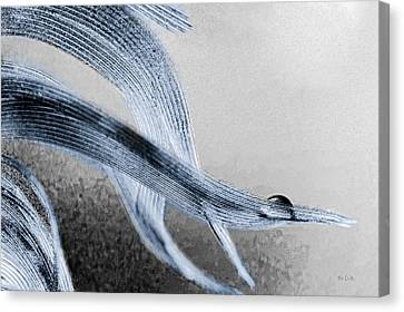 Canvas Print featuring the photograph Resting On A Feather by Bob Orsillo