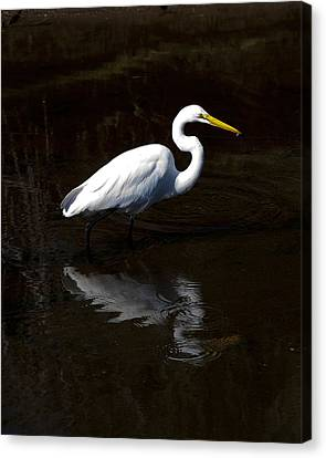 Canvas Print featuring the photograph Resting Reflection by Paula Porterfield-Izzo