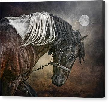 Canvas Print featuring the photograph Restless Moon by Brian Tarr