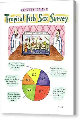 Two Fish Canvas Print - Results Of The Tropical Fish Sex Survey 17% by Roz Chast