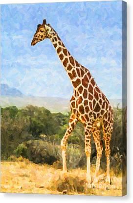 Reticulated Giraffe Kenya Canvas Print by Liz Leyden