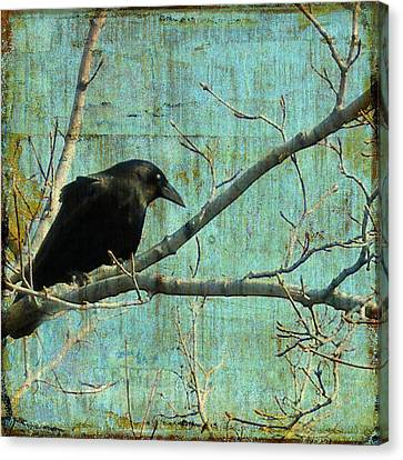 Retro Blue - Crow Canvas Print