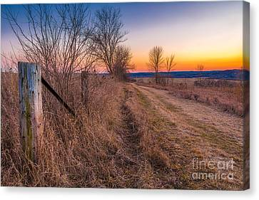 Retzer Sunset Path Canvas Print by Andrew Slater