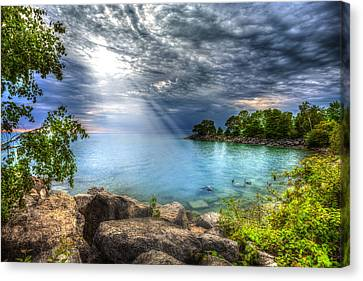 Reverie Canvas Print by Anthony Rego
