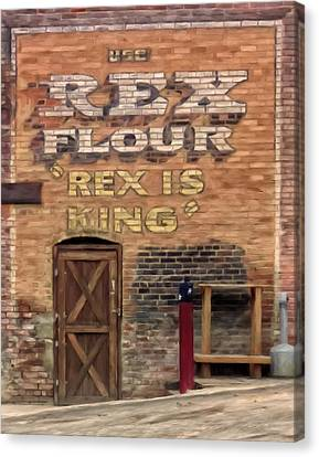 Rex Is King Canvas Print by Michael Pickett